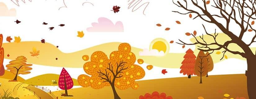 Stage d'automne à Tournai : Ah l'automne, …. Quelle belle saison !